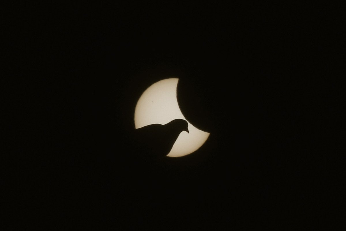 Partial Solar Eclipse Over Central Europe