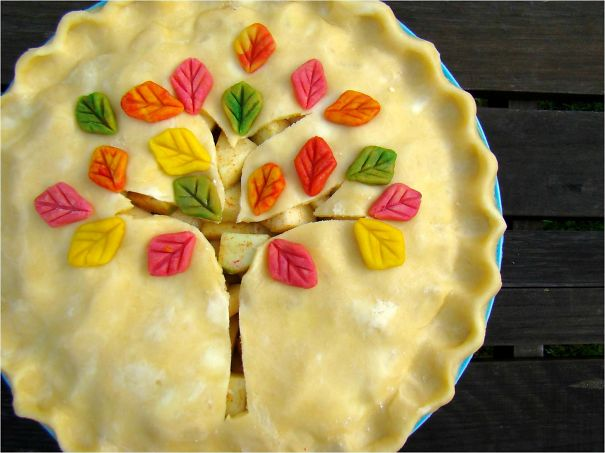creative-pie-ideas-crust-food-art-20__605