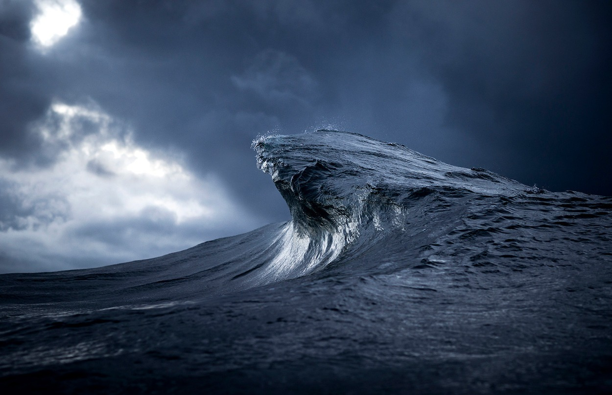 Blue-Hook---Ray-Collins