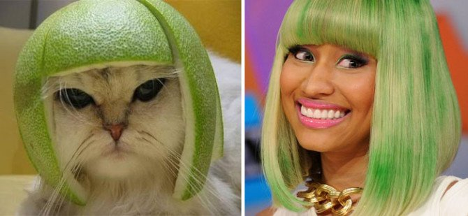 10-incredible-cats-that-look-like-famous-people-7-670x309