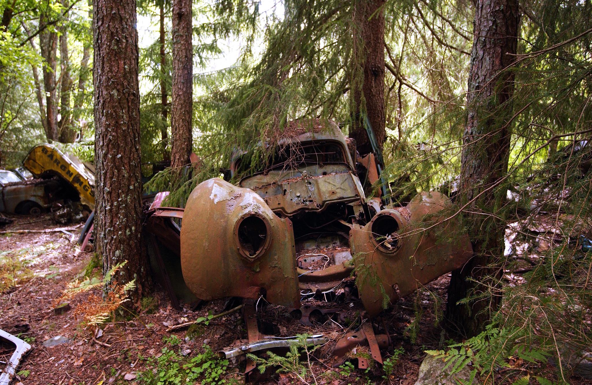 кладбище заброшенных автомобилей