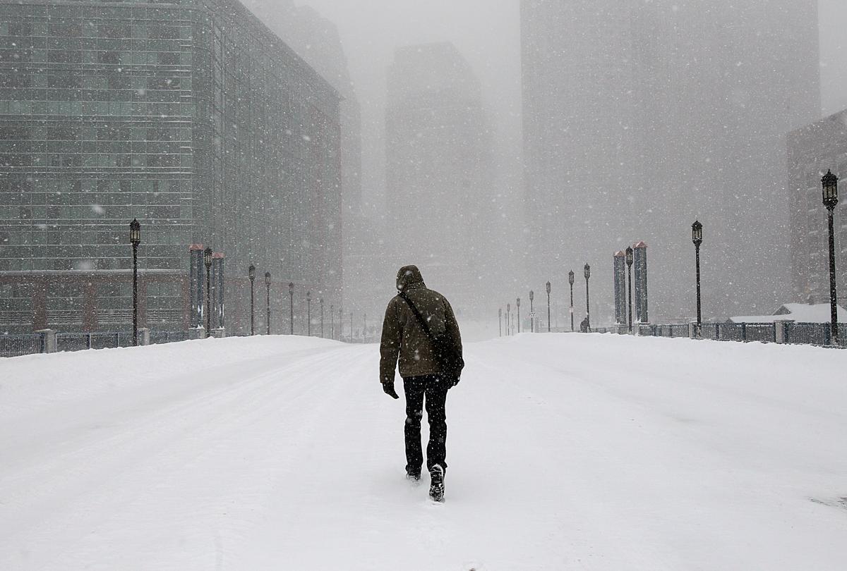 снежная буря сша