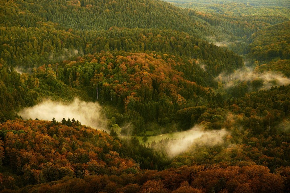 Black-Forest-Germany7