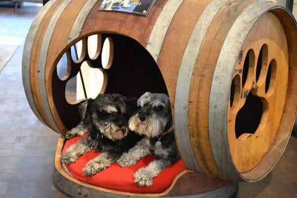 Кровать бочка для собаки