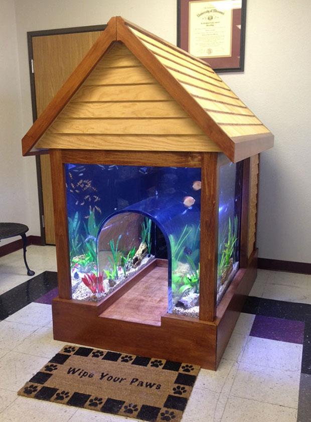 Будка аквариум для собаки