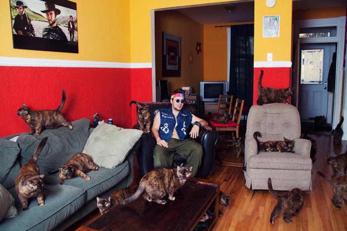 Фото с кошками