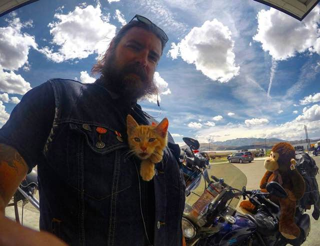cat-biker-saves-kitten-pat-doody-18