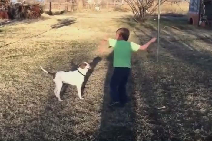 Мальчик и его щенок
