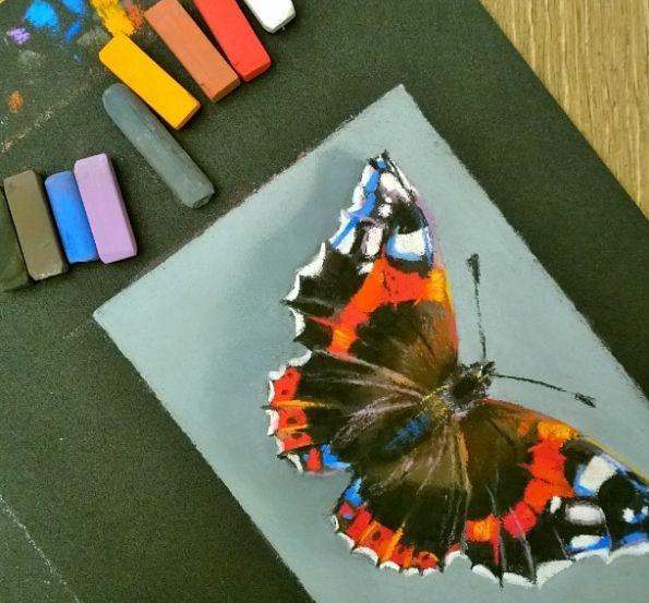 Научиться рисовать бабочку
