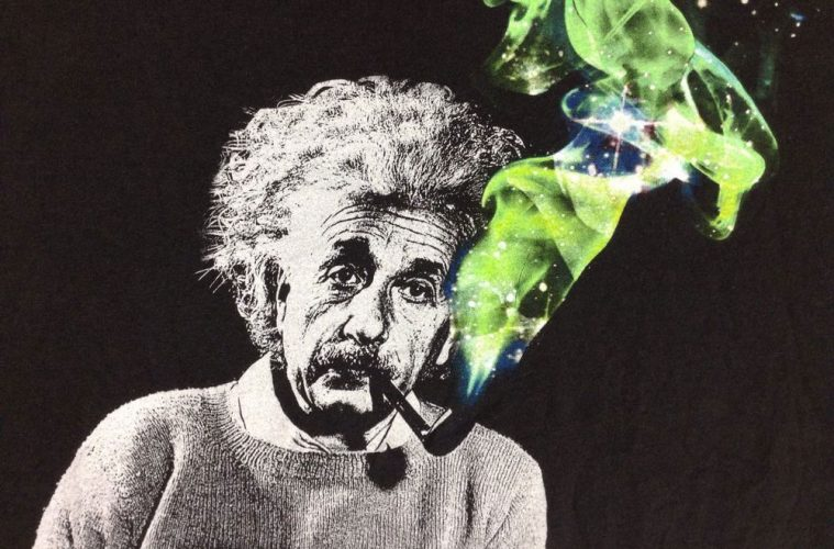 Как стаь гением