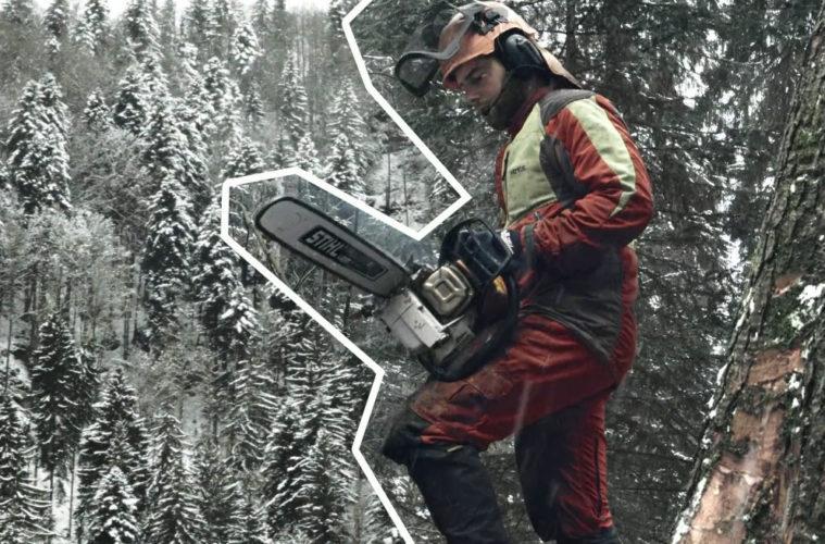 захватывающее ремесло лесозаготовок на швейцарском склоне горы
