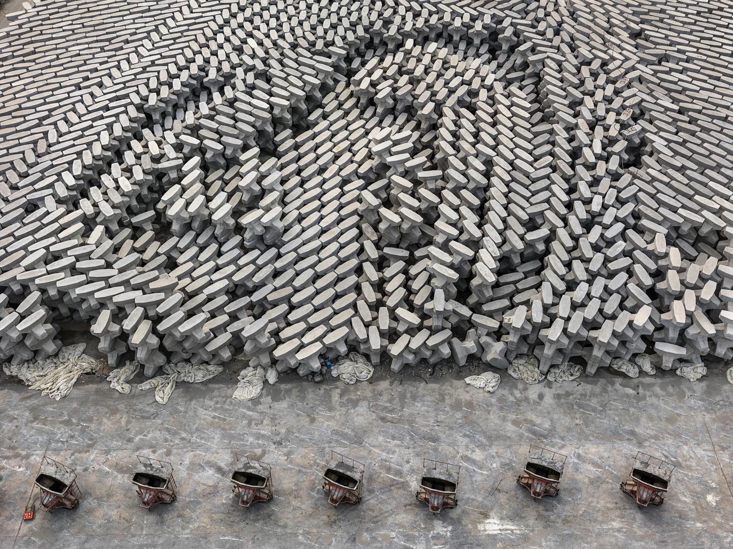 Тетрапод в Китае