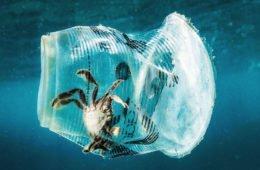 плстик в океане