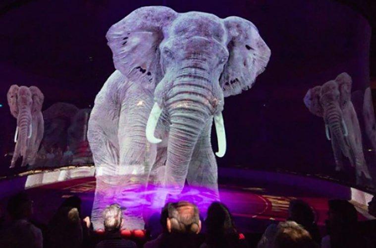 цирк с голограмой вместо животных