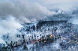 Фотография пожара в Сибири