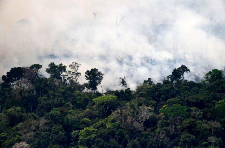 Горят леса Амазонии