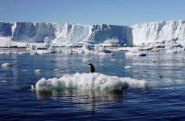 Факты об Антарктике