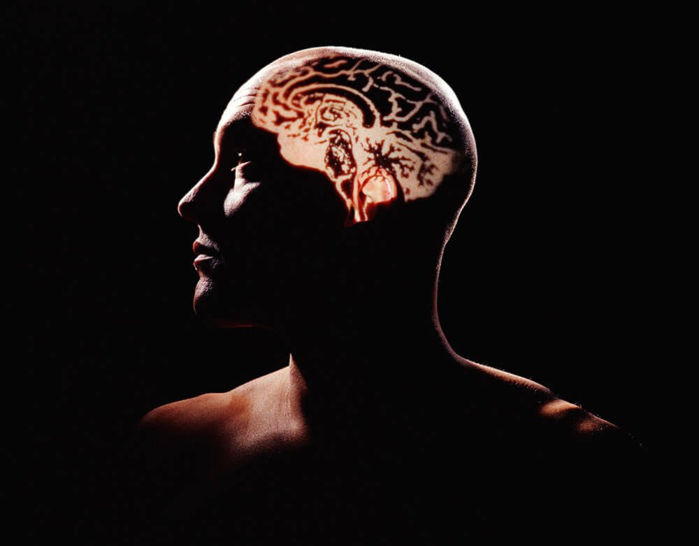мозг после смерти