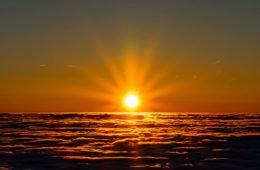 цвет солнца