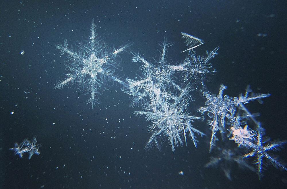 факты о зиме: снежинки