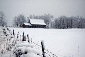 факты про зиму