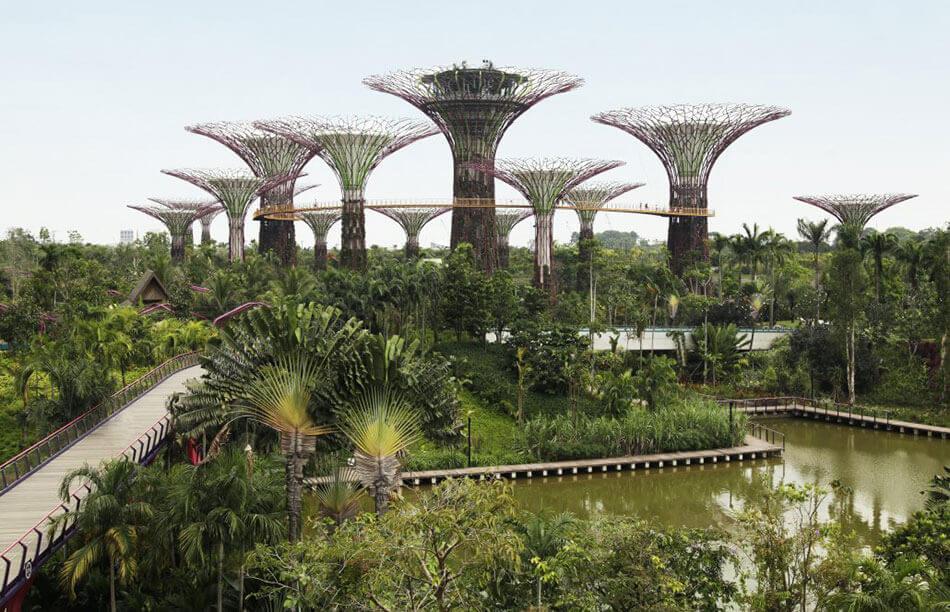 Ингапур