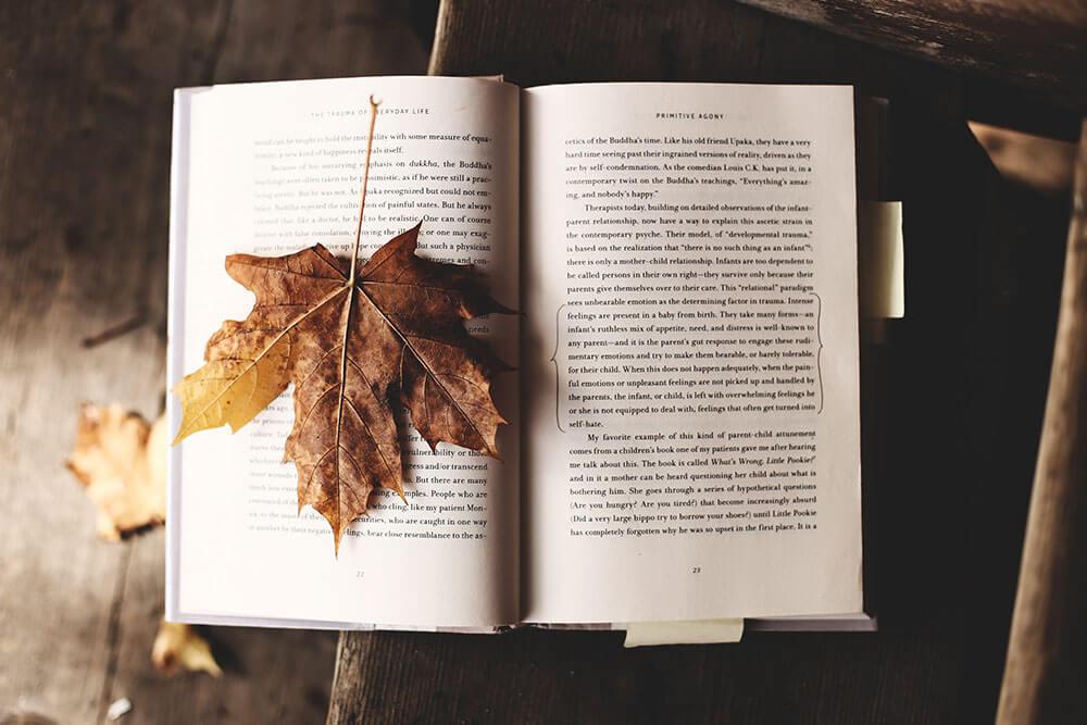 книга про осень