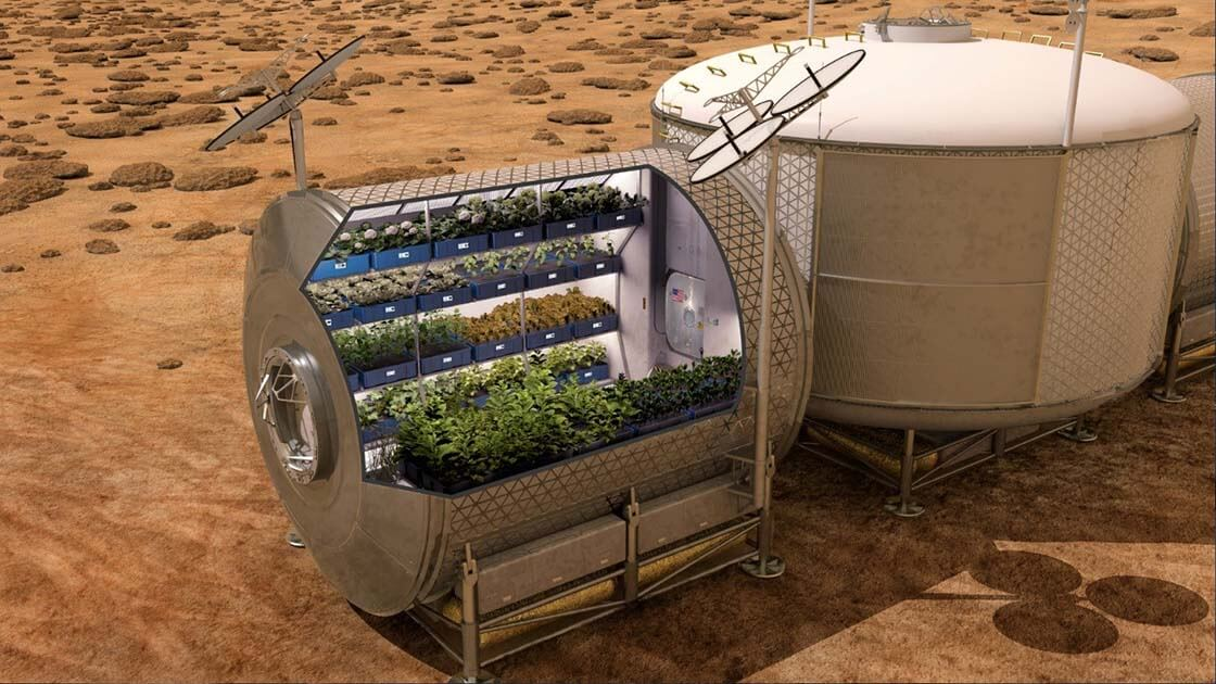 полёт на Марс: еда